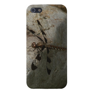 Dragonfly iPhone 5/5s Glossy Finish Case. iPhone SE/5/5s Cover