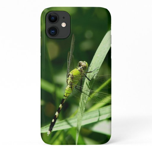 Dragonfly, iPhone Case. iPhone 11 Case