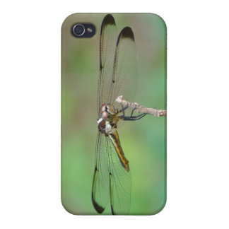 Dragonfly Iphone cover