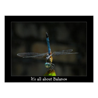 Dragonfly It's About Balance Poster