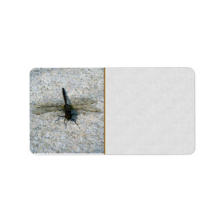 Dragonfly Label