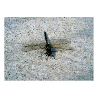 Dragonfly Large Business Card
