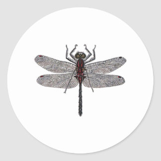 Dragonfly Logo (color) Classic Round Sticker