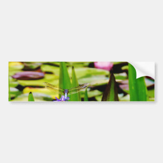 Dragonfly lotus and purple flower car bumper sticker