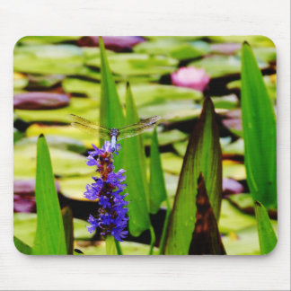 Dragonfly lotus and purple flower mouse pad