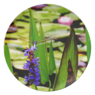 Dragonfly lotus and purple flower dinner plates