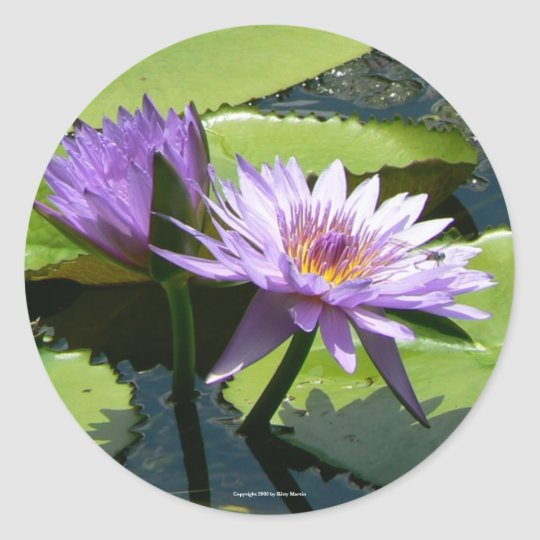 Dragonfly Lotus Classic Round Sticker