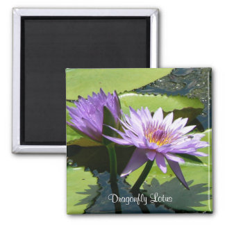Dragonfly Lotus 2 Inch Square Magnet