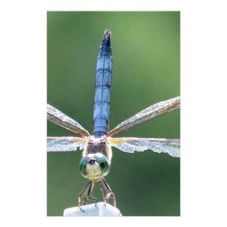 Dragonfly Love Stationery