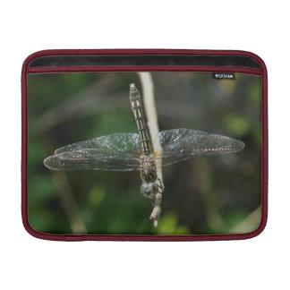 Dragonfly, Macbook Sleeve. MacBook Air Sleeve
