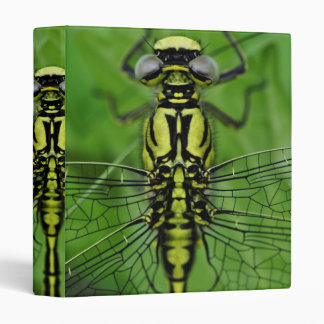 Dragonfly Macro Photo Binder
