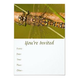 Dragonfly Macro Photo 5x7 Paper Invitation Card
