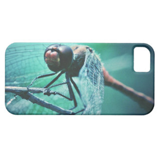 Dragonfly macro photography insect bug shoot iPhone SE/5/5s case