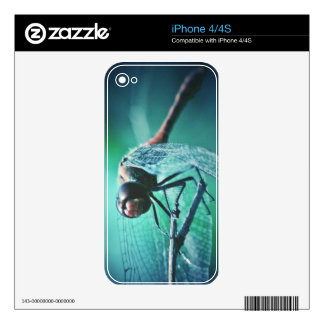 Dragonfly macro photography insect bug shoot decal for the iPhone 4