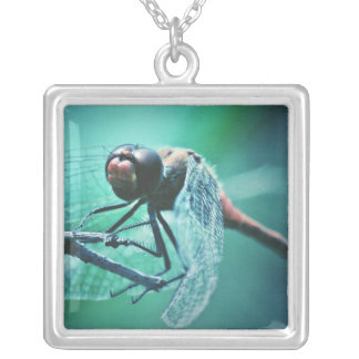 Dragonfly macro photography insect bug shoot square pendant necklace