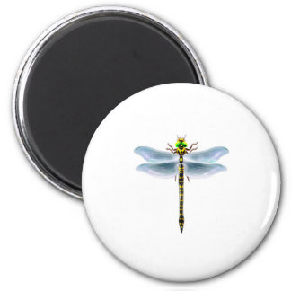 dragonfly merchandise magnet
