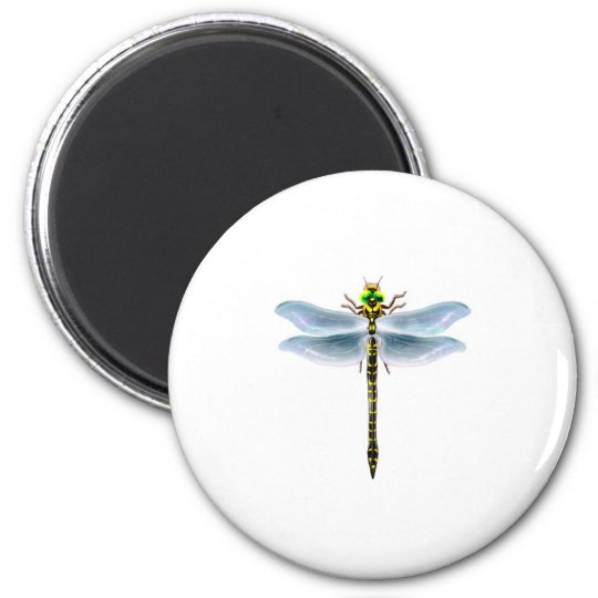 dragonfly merchandise magnet