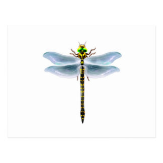 dragonfly merchandise postcard
