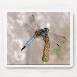 Dragonfly! Mouse Pad