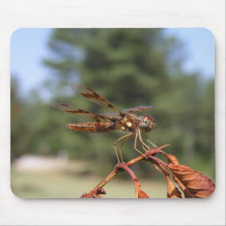 Dragonfly- Mousepad