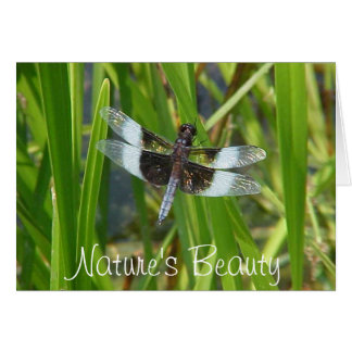 Dragonfly, Nature's Beauty Card