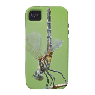 Dragonfly Obelisking Vibe iPhone 4 Cover