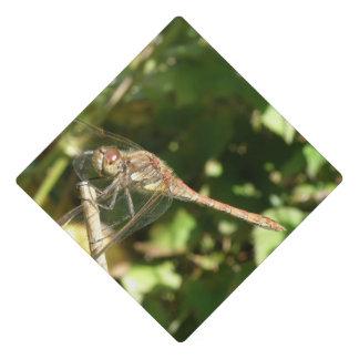 Dragonfly on a Twig Graduation Cap Topper