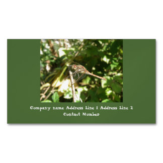 Dragonfly on a Twig Personalized Business Cards
