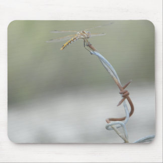 Dragonfly on Barb wire Mouse Pad