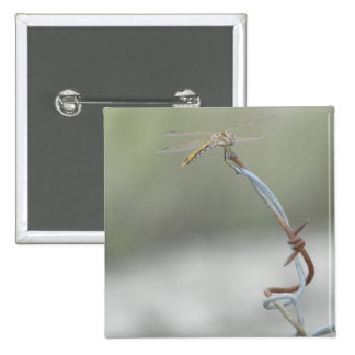 Dragonfly on Barb wire Pinback Button