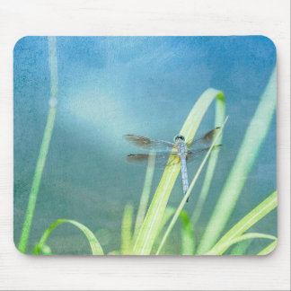 Dragonfly on Blue Mouse Pad