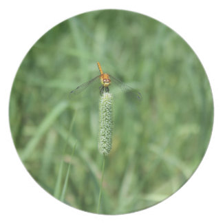 Dragonfly on Cattail Dinner Plate