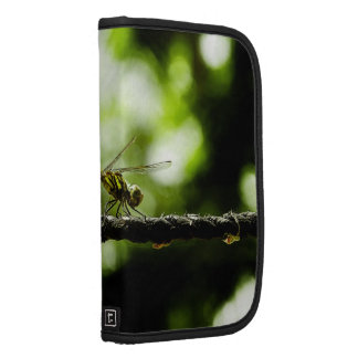 Dragonfly on green - Folio Planners