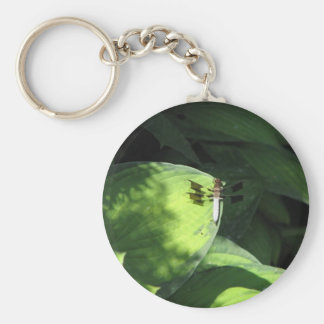 Dragonfly on Hosta leaf Keychain