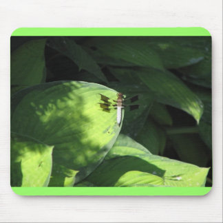 Dragonfly on Hosta Leaves Mouse Pads