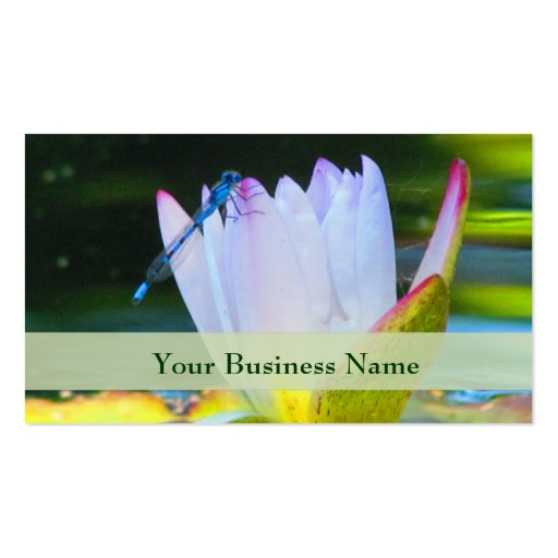 Dragonfly on Lily  Business Card