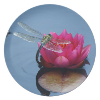 Dragonfly On Lotus Flower Plate