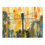 Dragonfly on my Window Postcard