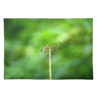 dragonfly on yellow stick green background insect cloth placemat