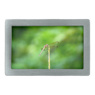 dragonfly on yellow stick green background insect rectangular belt buckle