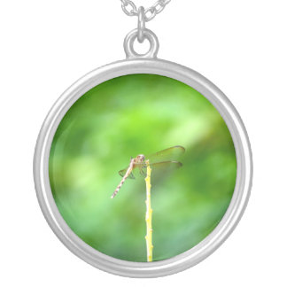 dragonfly on yellow stick green background insect round pendant necklace