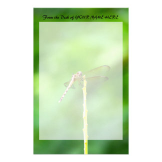 dragonfly on yellow stick green background insect stationery