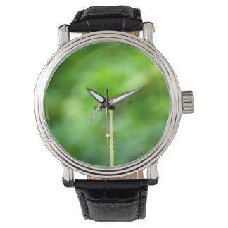 dragonfly on yellow stick green background insect wrist watches