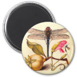 Dragonfly, Pear, Carnation, and Insect 2 Inch Round Magnet