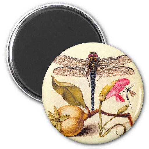 Dragonfly, Pear, Carnation, and Insect Refrigerator Magnet
