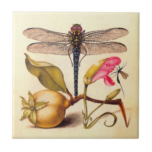 Dragonfly, Pear, Carnation, and Insect Ceramic Tiles