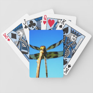 Dragonfly Perched Playing Cards