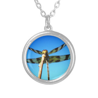 Dragonfly Perched Silver Plated Necklace