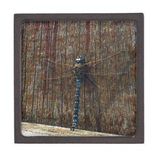 dragonfly premium keepsake box