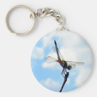 Dragonfly ~ Prepare for Take-off Keychain